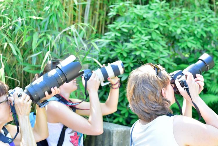 Kursteilnehmer Praxiskurs Zoo
